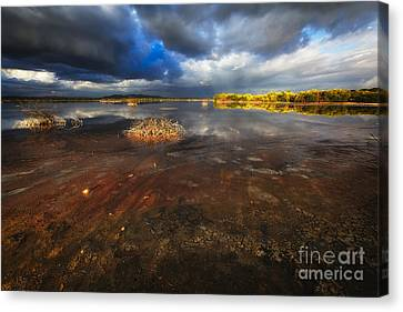 Marsh Landscape Of Cabo Rojo Canvas Print by George Oze