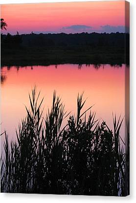 Canvas Print featuring the photograph Marsh Sunset by Clara Sue Beym