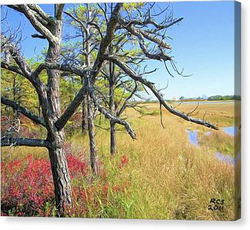 Marsh Trees Canvas Print