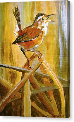 Marsh Wren Canvas Print by Edith Hunsberger