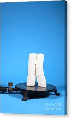 Marshmallows In A Vacuum, 1 Of 5 Canvas Print by Ted Kinsman