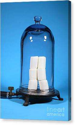 Marshmallows In A Vacuum, 2 Of 5 Canvas Print by Ted Kinsman