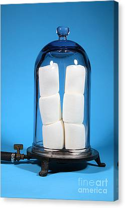 Marshmallows In A Vacuum, 5 Of 5 Canvas Print by Ted Kinsman