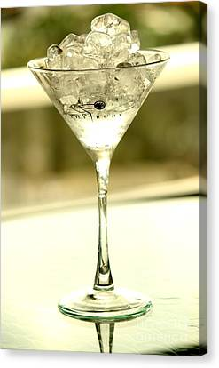 Martini Xiii Canvas Print by Rene Triay Photography