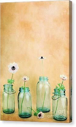 Mason Jars Canvas Print by Stephanie Frey