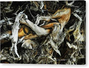 Mass Grave Canvas Print by Donna Blackhall