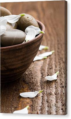 Wooden Bowl Canvas Print - Massage Stones  by Kati Finell