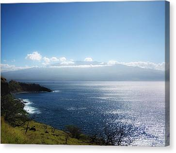 Maui Wonder Canvas Print by Linda Dunn