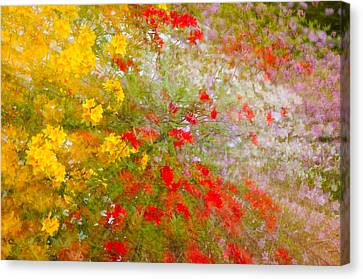 May Impression Canvas Print by Bobbie Climer
