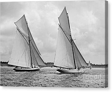 Mayflower And Galatea Start America's Cup 1886 Canvas Print by Padre Art