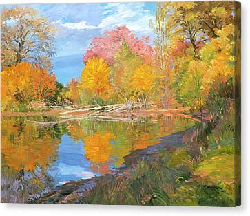 Mayslake At Fall Canvas Print by Judith Barath
