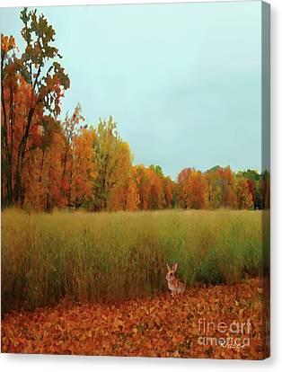 Meadow Canvas Print by David Klaboe