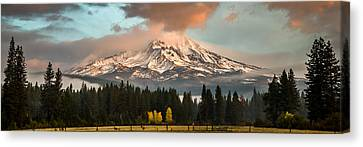 Canvas Print featuring the photograph Meadow Views by Randy Wood