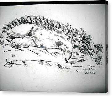 Medusa In Recline Canvas Print by Brian Sereda