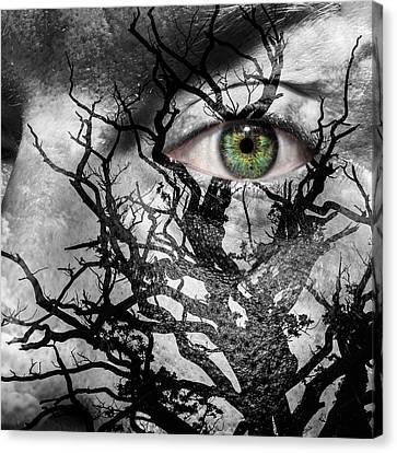 Medusa Tree Canvas Print by Semmick Photo