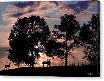 Meeting In The Sunset Canvas Print by Bill Stephens