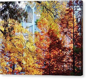 Canvas Print featuring the photograph Memphis College Of Art Overton Park Memphis Tn by Lizi Beard-Ward