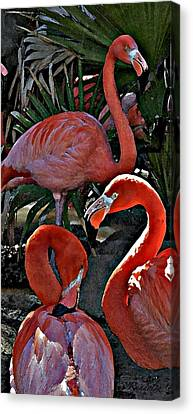 Canvas Print featuring the photograph Menage A Trois by Cheri Randolph