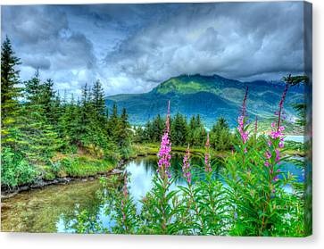 Mendenhall Fireweed Canvas Print by Don Mennig