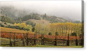 Mendocino In Autumn Canvas Print by Denice Breaux