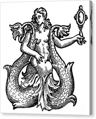 Mermaid, 1573 Canvas Print by Granger