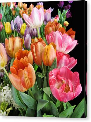 Merry Dresden Style Tulips Canvas Print by Kathy Clark