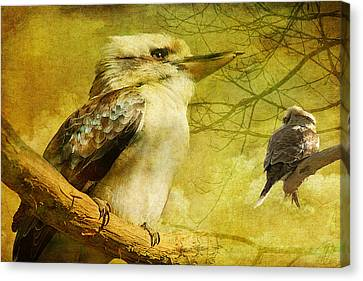 Merry Merry King Of The Bush  Canvas Print by Margaret Hormann Bfa