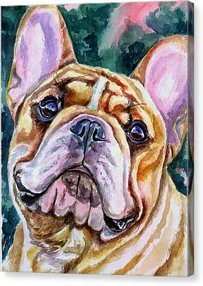 Mesmerizing Eyes Canvas Print by Lyn Cook