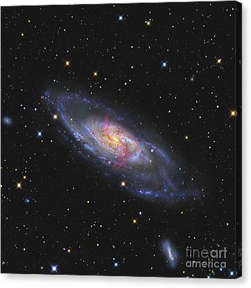 Messier 106, A Spiral Galaxy With An Canvas Print by R Jay GaBany