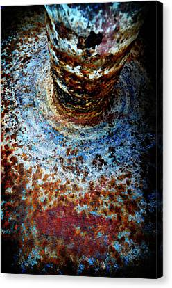 Canvas Print featuring the photograph Metallic Fluid by Pedro Cardona