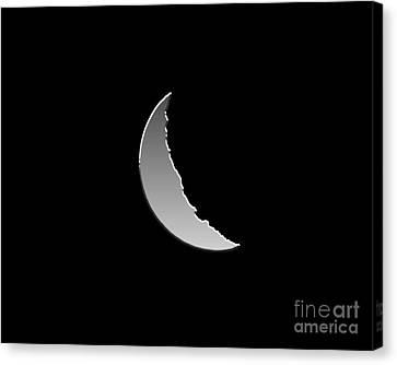 Metallic Moon Canvas Print by Al Powell Photography USA