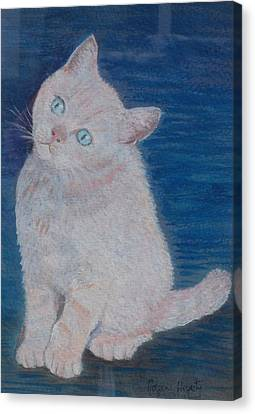 Miaow Canvas Print by Noreen Hegarty