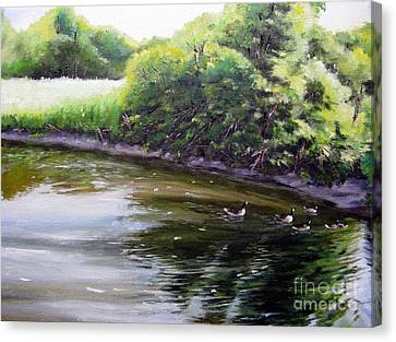 Mid Summer Day Canada Geese Canvas Print by Ronald Tseng