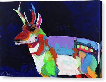 Pronghorn Antelope Canvas Print - Midnight Pronghorn by Tracy Miller