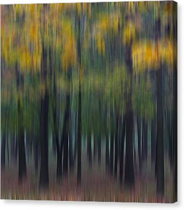 Midwest Autumn Canvas Print by Darlene Bushue