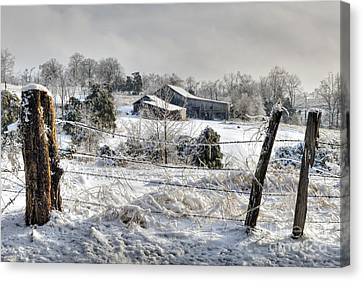 Midwestern Ice Storm - D004825 Canvas Print by Daniel Dempster