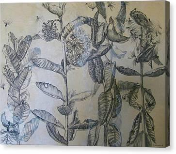 Milkweeds Canvas Print by Ruth Greenlaw
