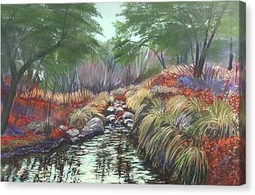 Miller Canyon Creek Canvas Print