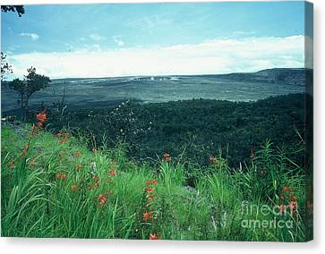 Million Dollar View Canvas Print