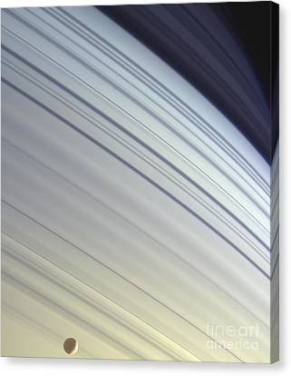 Mimas Drifts Along In Its Orbit Canvas Print by Stocktrek Images