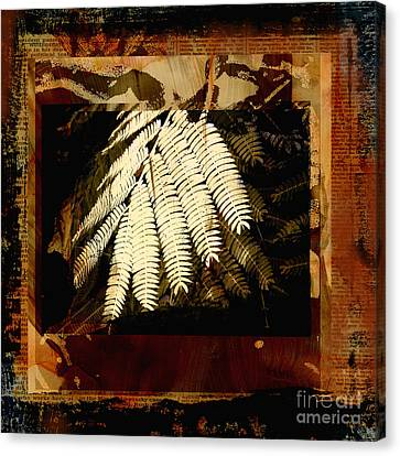 Mimosa Leaf Collage Canvas Print by Ann Powell