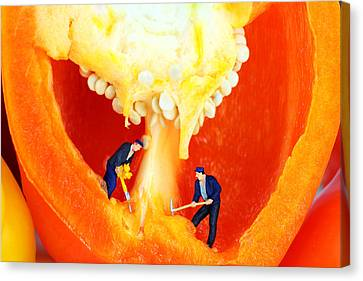 Mining In Colorful Peppers II Canvas Print by Paul Ge