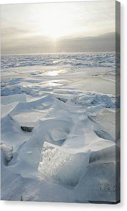 Minnesota, United States Of America Ice Canvas Print