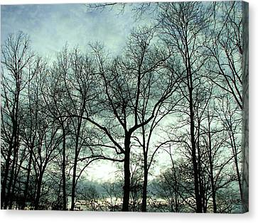 Canvas Print featuring the photograph Mirage In The Clouds by Pamela Hyde Wilson