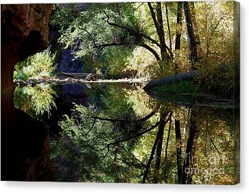 Canvas Print featuring the photograph Mirror Reflection by Tam Ryan
