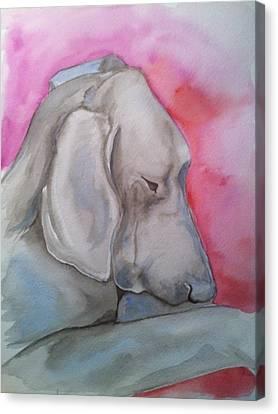 Miss Zoe Canvas Print