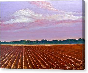 Mississippi Land And Sky Canvas Print