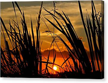 Canvas Print featuring the photograph Mississippi Sunset At The Ross Barnett Reservoir 2 by Jim Albritton