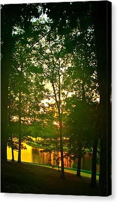 Mississippi Sunset Canvas Print by Frank SantAgata