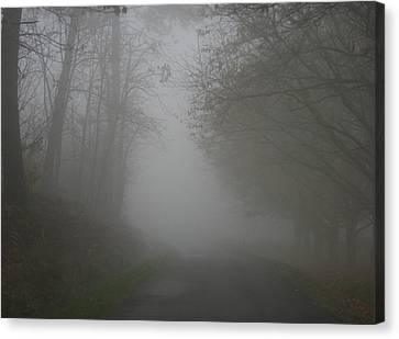 Mist Fog And The Road Canvas Print